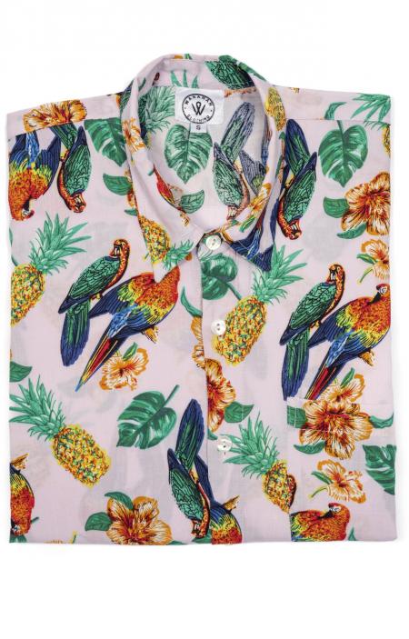 Parrots Rosa